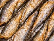 Пържена риба херинга в краве масло